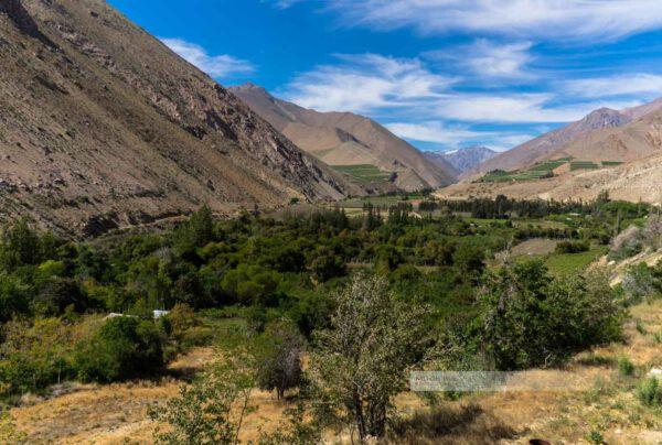 Valle del Elqui (das Elquital) umgeben von karger Natur, erstrahlt es im satten Grün durch einen Fluss