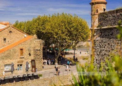 Frankreich-Collioure-Südfrankreich-Côte Vermeille-Mittelmeer-10