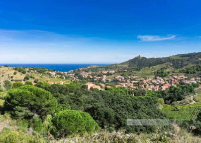 Frankreich-Collioure-Südfrankreich-Côte Vermeille-Mittelmeer-11
