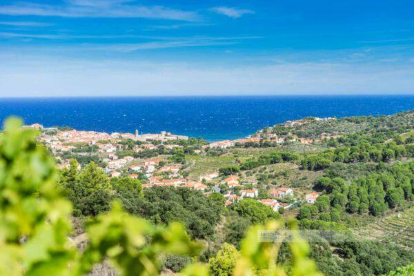 Frankreich-Collioure-Südfrankreich-Côte Vermeille-Mittelmeer-12