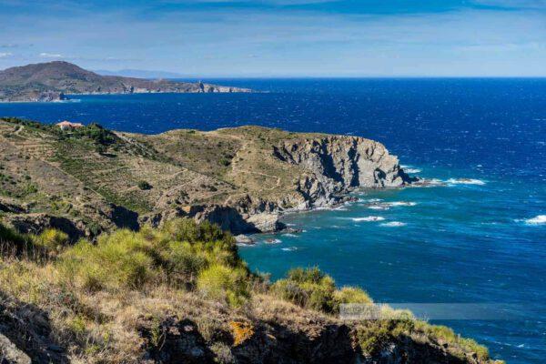 Frankreich-Collioure-Südfrankreich-Côte Vermeille-Mittelmeer-13