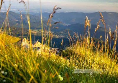 Blick ins Tal vom Gipfel des Grand Ballon