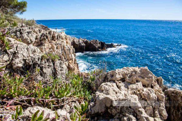 Frankreich- Wanderung - Cap d' Antibes - Côte d' Azur - Natur Südfrankreich-Mittelmeer-5