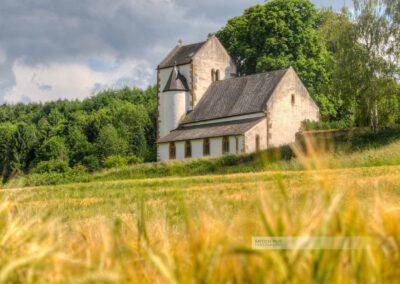 Die Hirsauer Kirche im Landkreis Kusel im Sommer. Kornfeld in der Westpfalz,