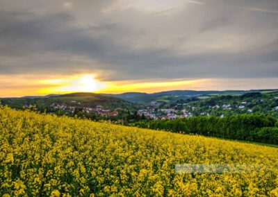 Blick auf die kleinste Kreisstadt Deutschlands, Kusel. Ein blühendes Rapsfeld ist im Vordergrund