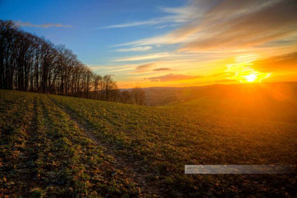 Warme Sonnenstrahlen an einem Feld bei Ohmbach (Westpfalz, Kreis Kusel, Pfälzer Bergland)