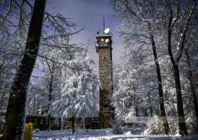 Nachtbild des Potzbergturms auf dem Potzberg. Schneebaladene Bäume, tiefblauer Nachthimmel. Aufgenommen im Landkreis Kusel (Westpfalz)