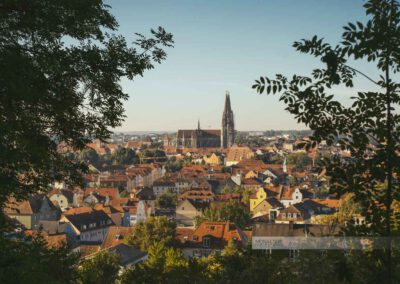 Regensburg Stadtpanorama vom Dreifaltigkeitsberg