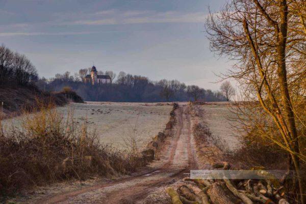 Morgenlicht am Remiguisberg bei Haschbach. Die Propsteikapelle St. Remiguis in Hintergrund. (Westpfalz, Kreis Kusel, Pfälzer Bergland)