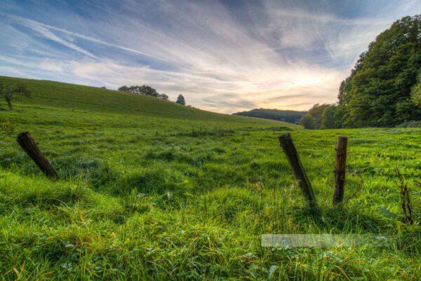 Abendlicht am Waldrand, Alte Weidezaun ist im Vordergrund, schöne Wolken (Westpfalz, Kreis Kusel, Pfälzer Bergland)
