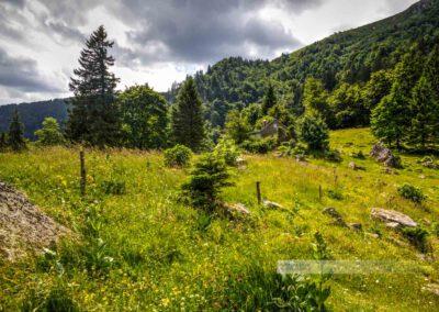 Sentier des Roches, Felsenpfad, Auberge Trois Fours, Landschaft, Vogesen